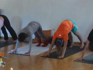 yogales la Palma met Beweeg en Leef