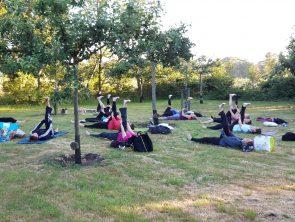 Chi Yoga, Yin -Yang Yoga, Yin Yoga,