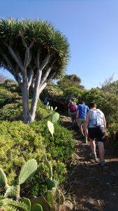 wandeltocht Beweeg en Leef op la Palma